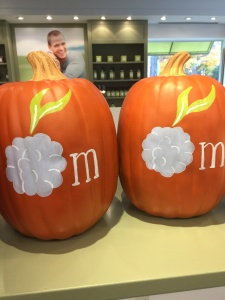 Close up of Custom Painted Mulberrys Pumpkins