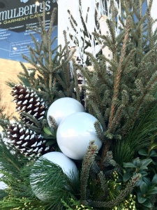Close up of potted displays at Mulberrs